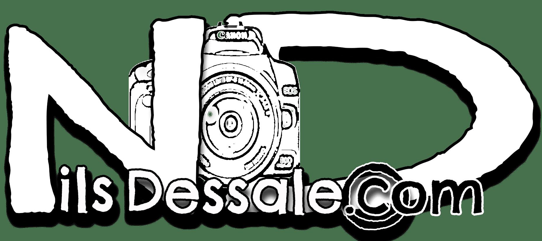 photographie nils dessale
